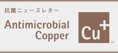 International Copper Association